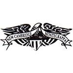 New Cambridge Institute